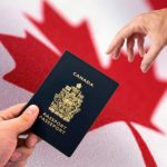 Things to know about Canada immigration lawyers