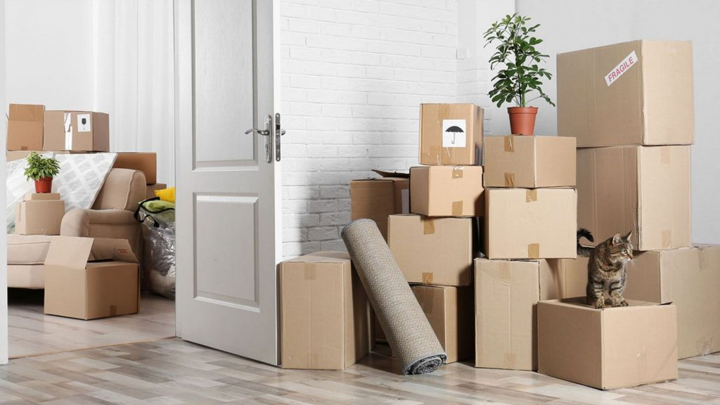 Are packing and storage services even worth it?